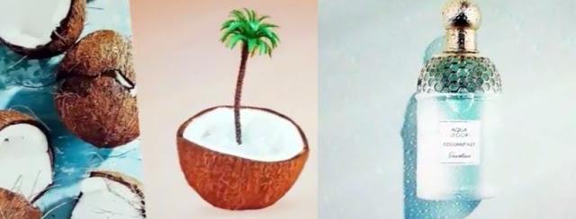 Guerlain Aqua Allegoria Coconut Fizz (oficjalne materiały)